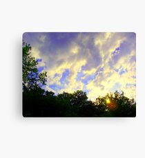 weather Canvas Print