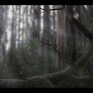 Kunai Skewered by Akuma91