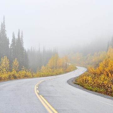 Into the Fog, Stewart–Cassiar Highway, Canada by kasianowak