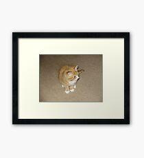 Garfield Framed Print