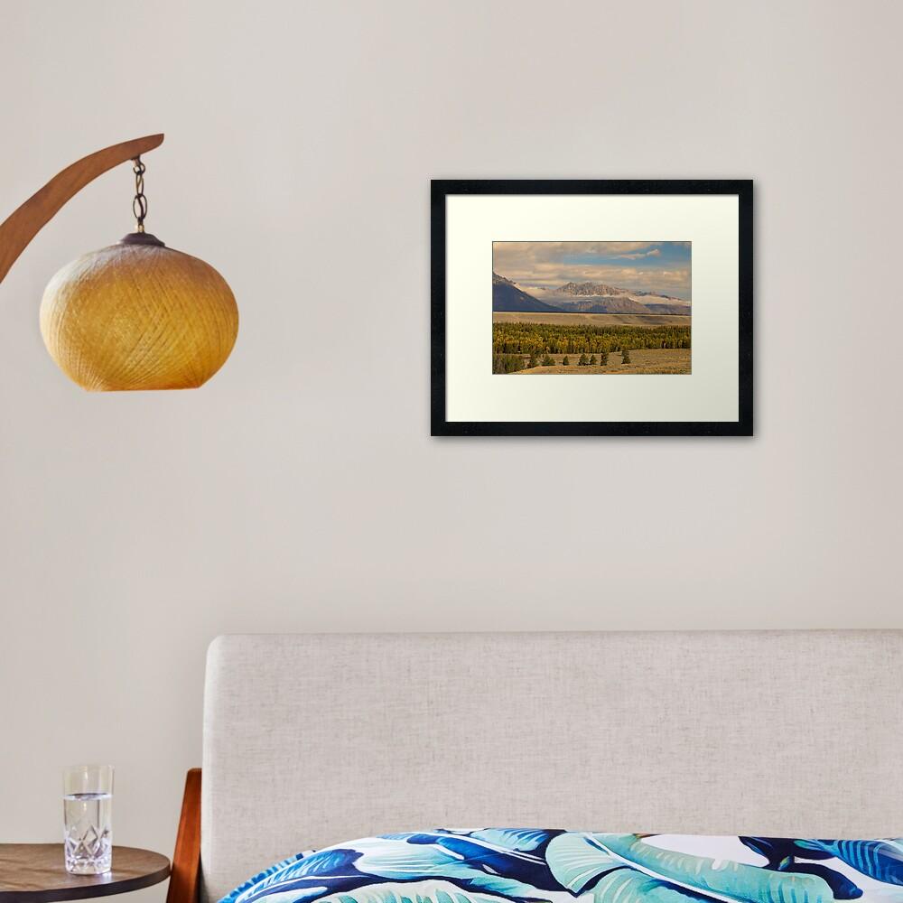 Tetons Views Framed Art Print