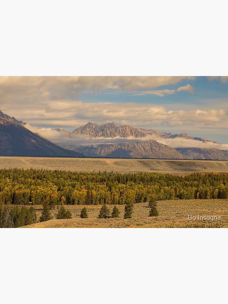 Tetons Views by mrbo