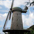 Dutch Windmill by Nikki Collier