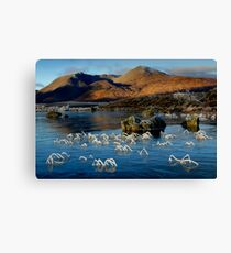 Morning frost - Lochan na h-Achlaise Canvas Print