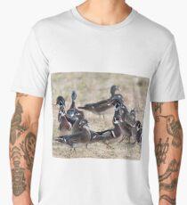 Wood ducks checking all directions Men's Premium T-Shirt