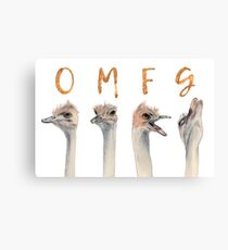 OMFG Ostriches Canvas Print