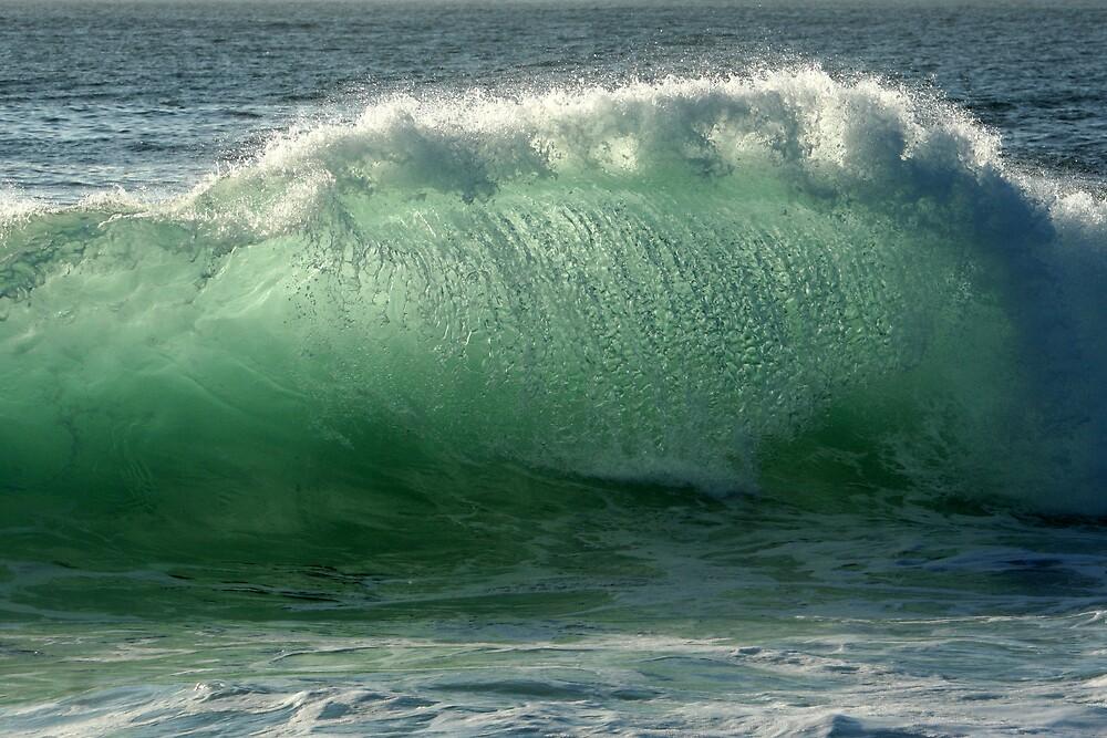 Backlit Wave by Trevor Farrell