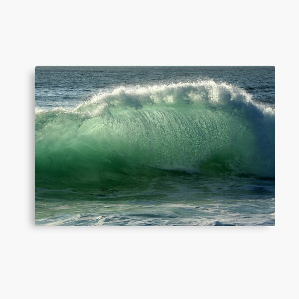 Backlit Wave Canvas Print