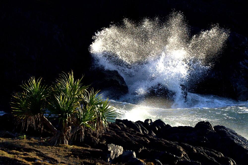 Dawn Wave by Trevor Farrell