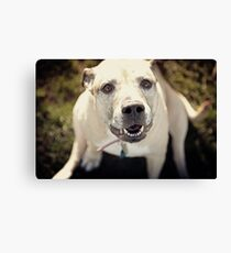 You with me? Canvas Print