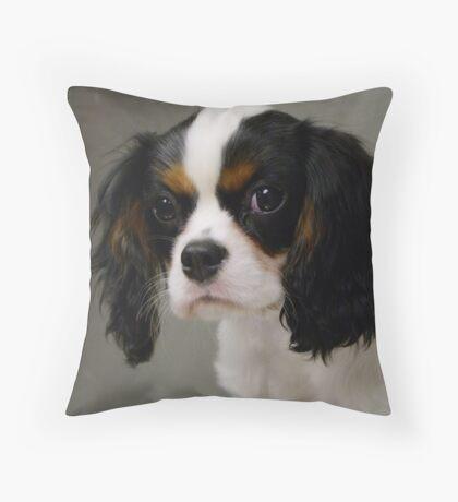 Sweet Little Puppy  Throw Pillow