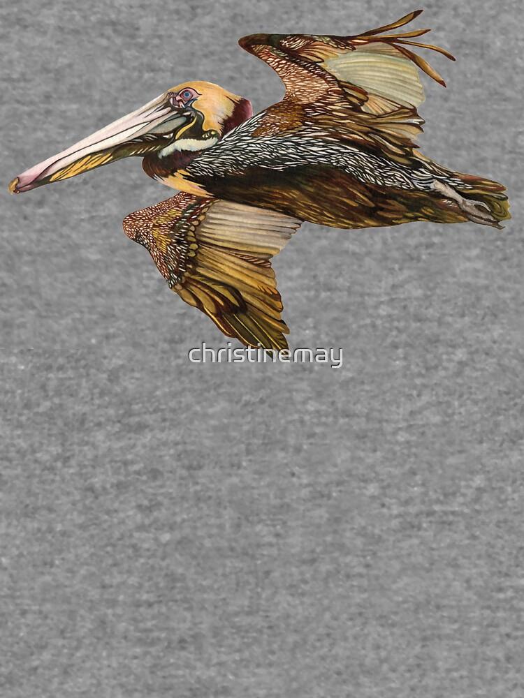 Brown Pelican Flight with Vintage Seafoam Stripe (California Bird) by christinemay