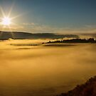 Fog On Yellowstone Lake by Bo Insogna