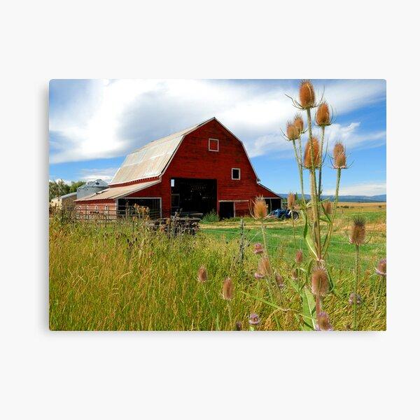 Barn & Thistle Canvas Print