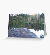 Enchanted Forest - Sun Alert All Trolls! Greeting Card