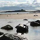 Low Newton Beach by mousesuzy