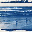 Hahei Beach Blueprint by VanOostrum