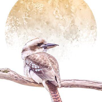 Kookaburra by GavinScott