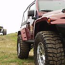 Jeep and monster truck by valizi