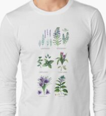 Watercolor botanical collection of herbs and spices Long Sleeve T-Shirt