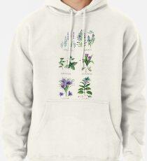 Sudadera con capucha Colección botánica de acuarela de hierbas y especias
