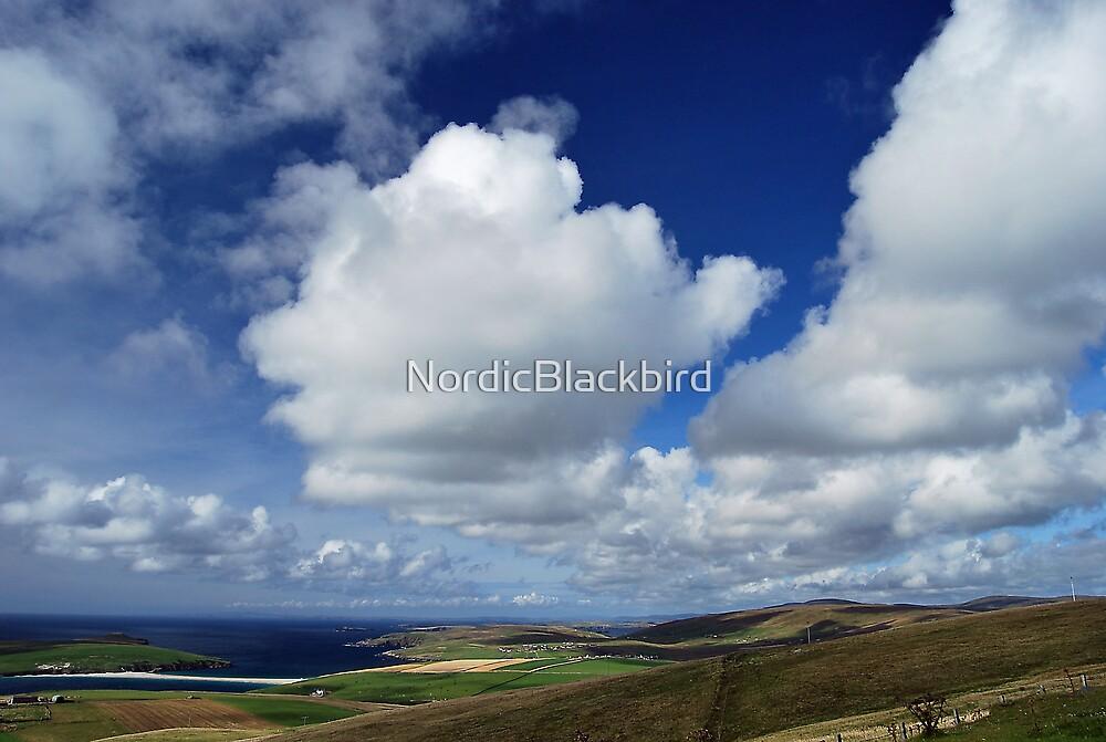 cloudbuster's delight by NordicBlackbird