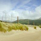 sand and wires  by Jon Baxter