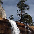 Vernal Falls by © Loree McComb