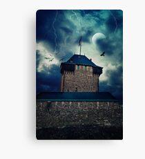 Castle Burg / Schloss Burg Canvas Print