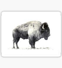 American Bison Sticker