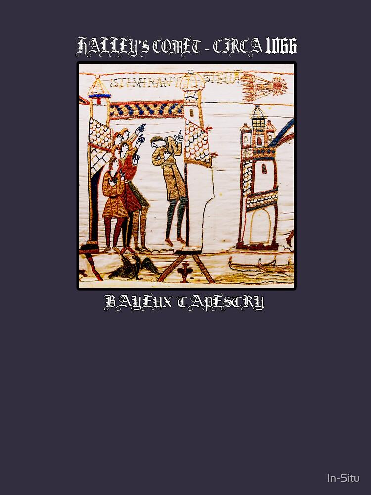 Teppich von Bayeux Halley's Comet - Circa 1066 von In-Situ