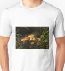 Sulphur Tuft Fungi in Woodland T-Shirt