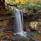 Cucumber Falls by thatstickerguy