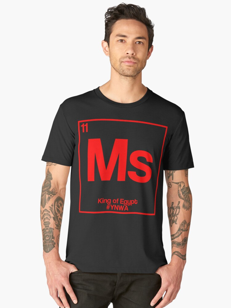rco,mens_premium_t_shirt,mens,x1770,1010