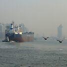 Hongpu River shipping vessel by Patrick Czaplewski