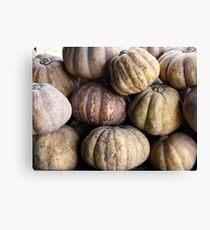 Bunch of fresh raw squash or pumpkin Canvas Print
