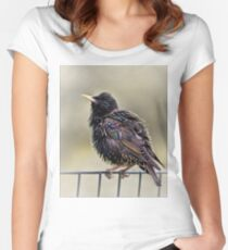 Starling Women's Fitted Scoop T-Shirt
