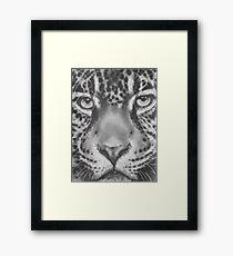 Up Close Jaguar Framed Print