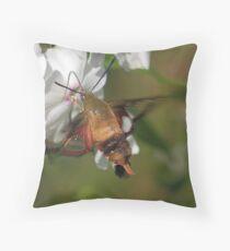 Hummingbird Moth * Throw Pillow