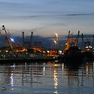 Brixham trawlers at sunset  by sdevonplayers