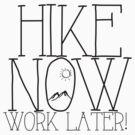 Hike Now, Work Later by shakeoutfitters