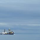 Brixham Trawler by sdevonplayers