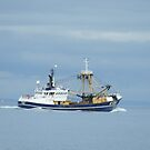 Brixham Trawler at sea  by sdevonplayers