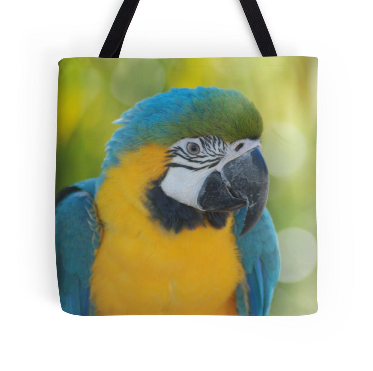Parrot\