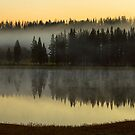 Early Morning Foggy Reflections by Bo Insogna