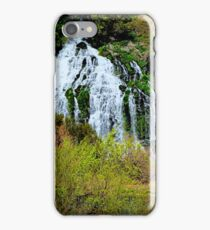 Thousand Falls...Hagerman, Idaho iPhone Case/Skin