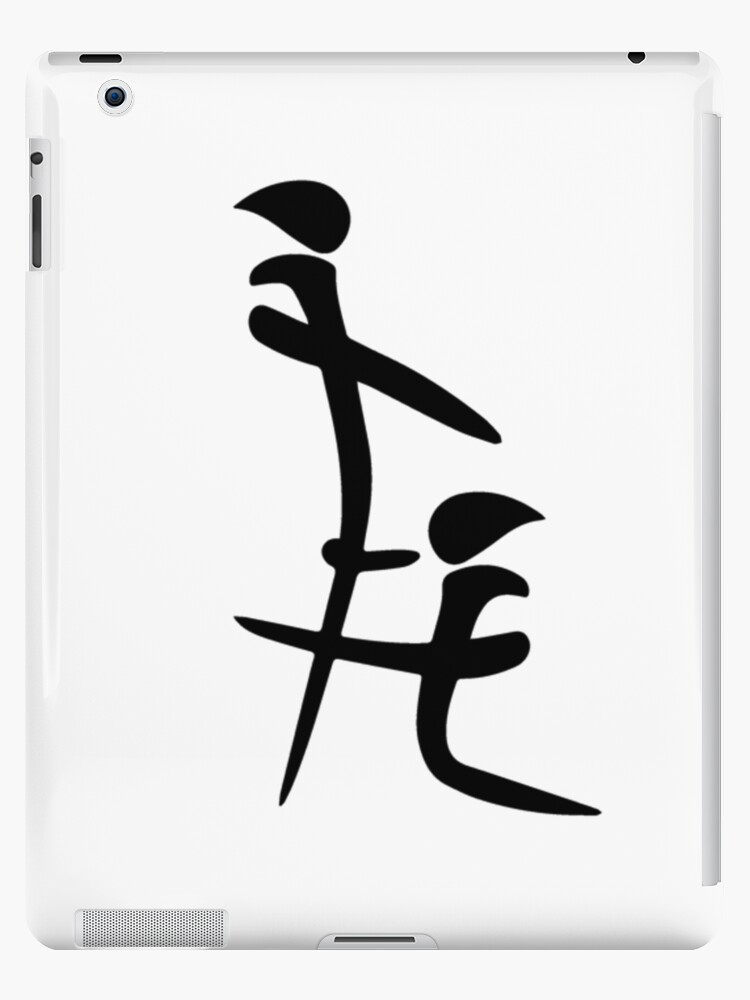 Chinese Blowjob Symbol Funny Ipad Cases Skins By Elizabeth