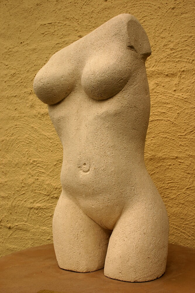 Female torso - nude by Hans de Lange