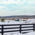 Winter Wonderland by Mary Carol Story
