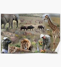 Garden Route Game Lodge Composition Poster